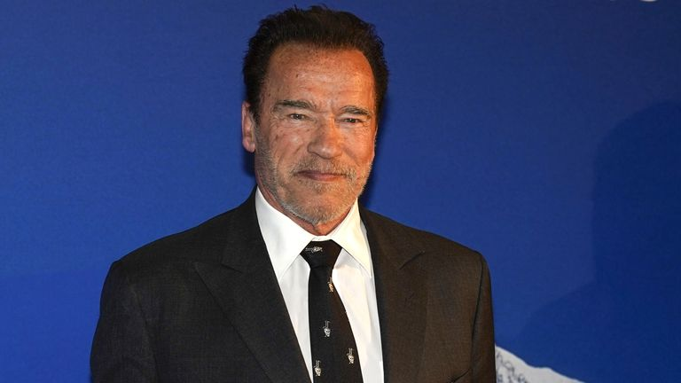 Actor Arnold Schwarzenegger is suing Promobot for using a robot which looks like him