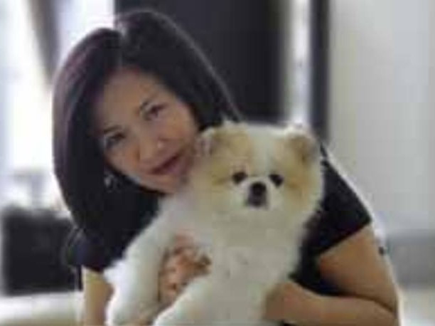 A Pomeranian dog tested positive for the coronavirus in Hong Kong after catching it from its owner