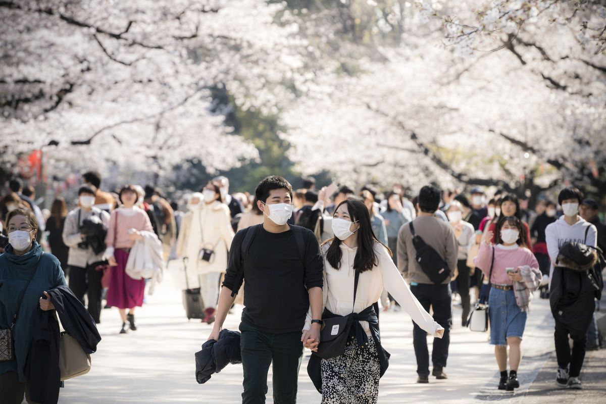 Coronavirus in Japan: Why the country's relatively small number of Covid-19 cases may be a mirage 7