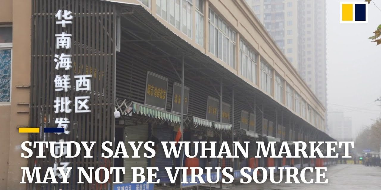 Deadly coronavirus may not have originated in Wuhan seafood market, Chinese scientists say